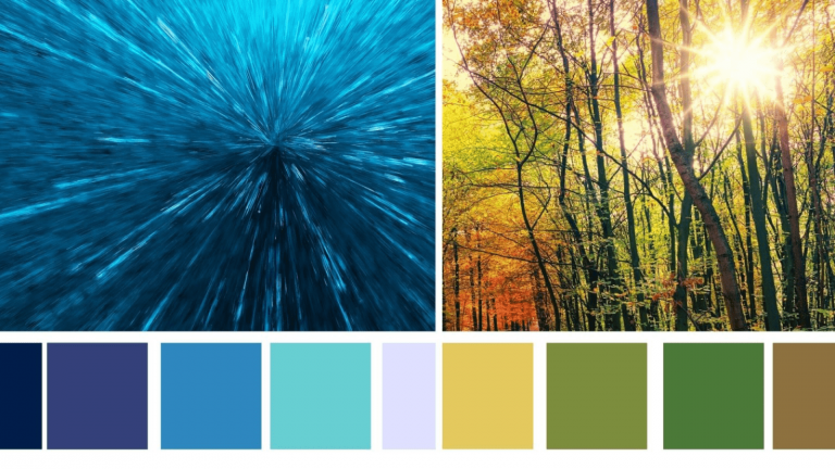 Learn about various colour schemes and more for decorating your home.