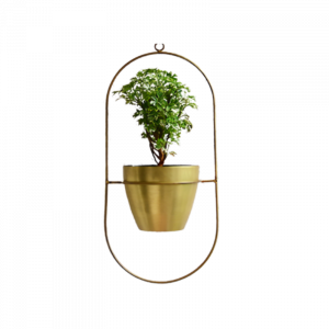 Planter & Foliage Product 21