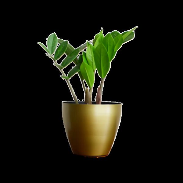 Planter22
