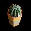 Planter34