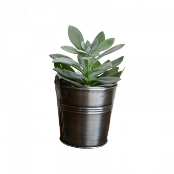Planter43